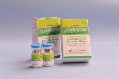 注射用乳糖酸阿奇霉素0.25g×1支